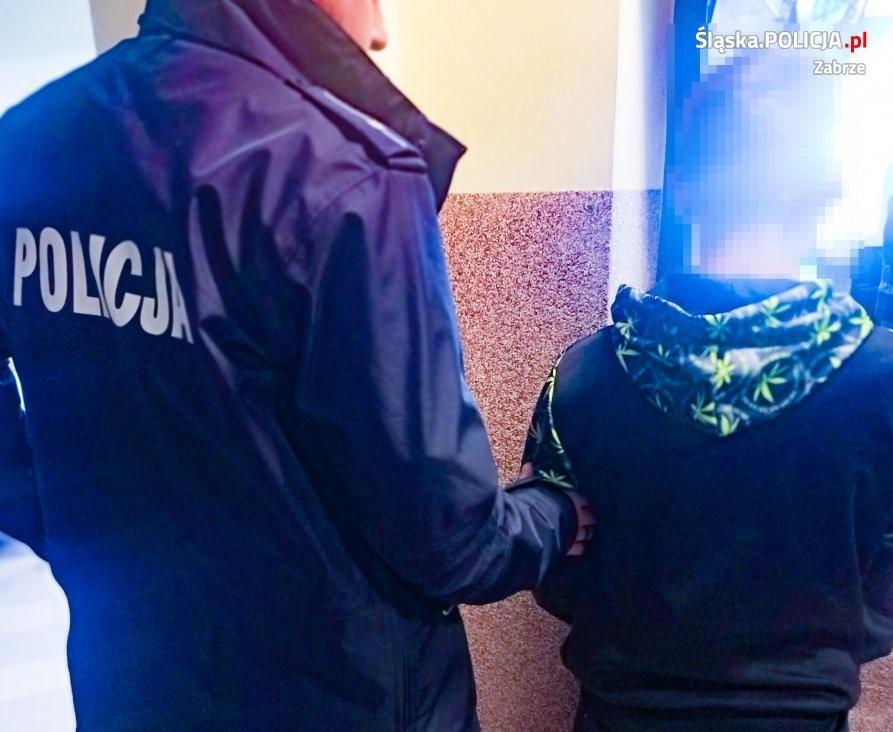 18 latkowi, który w minioną sobotę ugodził nożem 58 letniego przechodnia grozi nawet dożywotnie więzienie. Do zdarzenia doszło na ul. Robotniczej w Zabrzu w godzinach wieczornych. O sprawie poinformował w miniony weekend portal Zabrze112.pl